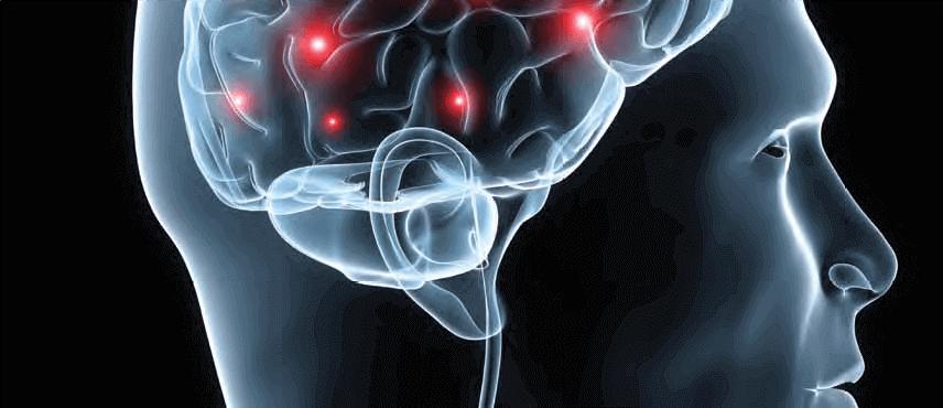 تأثیر نیکوتین بر بخش های مختلفی از مغز