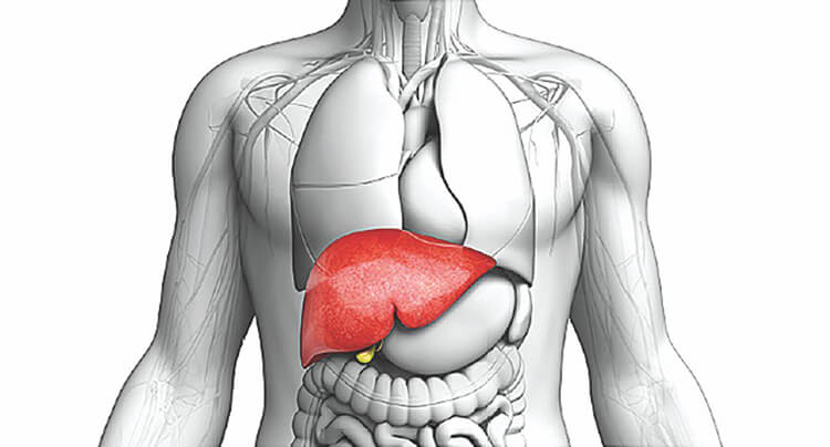 بیماریهای کبدی میتوانند باعث افزایش احتمال بروز علائم خطرناک بیماری کرونا شوند.
